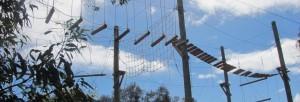high-ropes-image.jpg